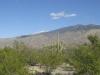 saguaro_natl_park_01