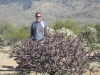 saguaro_natl_park_02