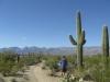 saguaro_natl_park_03
