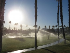 morning-sprinklers_1