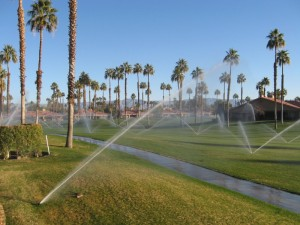 morning-sprinklers_2