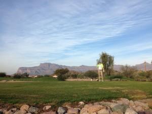 Tim golfing