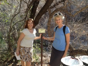 Noreen and Sue at the Arboretum