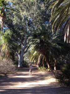 Noreen at the Arboretum