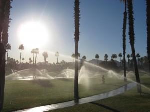morning-sprinklers_1