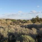 desert-dunes-two-6