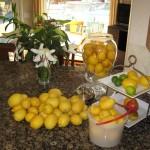 lemons-on-counter