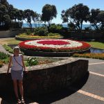 Beautiful flower displays in Napier's town centre.